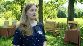 Pszczoły zapylają 70 proc. gatunków roślin, które gwarantują 90 proc. pożywienia. Bez nich polskie rolnictwo straciłoby ponad 4 mld zł