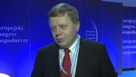 M.Witucki: nie możemy czekać 10 lat z przyjęciem euro. To szansa dla polskich firm