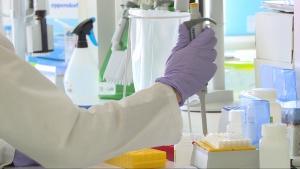 Odkryta przez polskich naukowców cząsteczka 1-MNA pomoże w walce z koronawirusem. Może wzmocnić odporność i wspomóc organizm w walce z infekcjami wirusowymi [DEPESZA]
