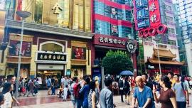 Szereg luk w ustawie o krajowym cyberbezpieczeństwie. Eksperci ostrzegają, że zaszkodzi relacjom z Chinami, odstraszy inwestorów i pozwoli cenzurować internet [DEPESZA] Depesze