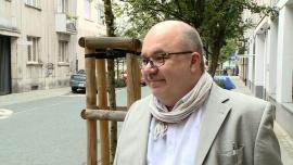 Wydawcy zdążyli z przygotowaniem podręczników. Nowe książki trafiły już do 95 proc. polskich szkół News powiązane z Polska Izba Książki