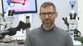 Polscy naukowcy badają interakcje koronawirusa z ludzkimi komórkami. Chcą umożliwić szybsze testowanie leków News powiązane z biotechnologia