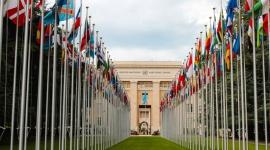 200 liderów wzywa ONZ do koordynacji badań, aby zapobiec wyginięciu człowieka