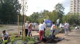 Skwer przy ul. Mireckiego na warszawskiej Woli ma nowe meble miejskie i rośliny