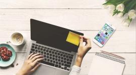Era freelancera - rośnie udział freelancerów w rynku pracy