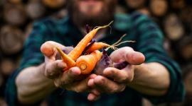 Produkujesz zdrową żywność i chcesz ją zaoferować innym? Internet daje duże możl