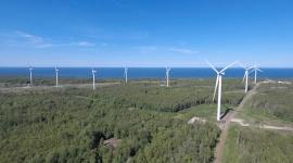 Estonia zrobiła ważny krok w kierunku budowy pierwszej morskiej farmy wiatrowej