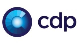 CDP.pl współpracuje z mBankiem