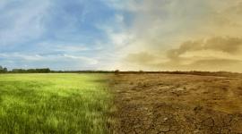 Fala upałów a ocieplenie klimatu