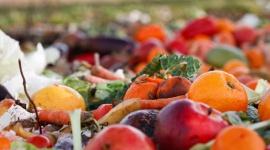 Realna szansa na ograniczenie skali marnowania żywności?