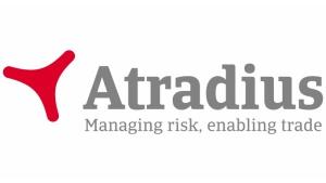 Atradius: jedynie konsumpcja prywatna powstrzymuje recesję