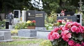 Granitowe pomniki i nagrobki. Jak o nie dbać?