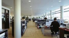 Hałas w biurach open space nie musi być uciążliwy