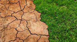 Światowy Dzień Ziemi. Każdy z nas może zadbać o środowisko naturalne
