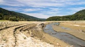 Polska pustynnieje a długotrwałe susze stały się już niemalże normą