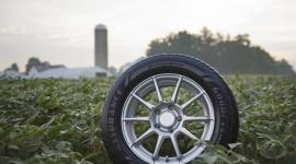 Goodyear wzmacnia swoje zaangażowanie w zrównoważone pozyskiwanie soi