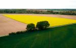 Stanowisko społeczne w sprawie polskiego rolnictwa Strona główna