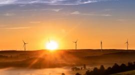 Zielona energia w firmie – fakty i mity