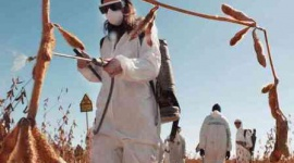 Monsanto wygrywa proces