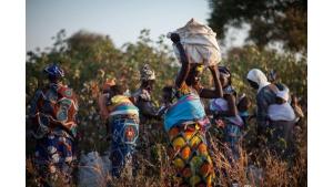 Bawełna Fairtrade na Dzień Dziecka