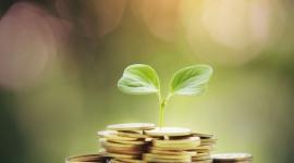 Grupa BEST z wysokimi spłatami wierzytelności i wzrostem EBITDA gotówkowej
