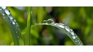 """Program """"Moja Woda"""" okazją do stosowania polskich zielonych technologii"""