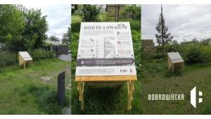Owady zamieszkały przy Bobrowieckiej 8