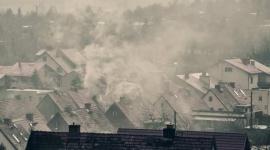 14 listopada - Dzień Czystego Powietrza. Jak o nie zadbać?