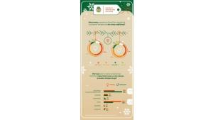 500 minus, czyli ile wydaje statystyczny Polak na prezenty świąteczne? Biuro prasowe