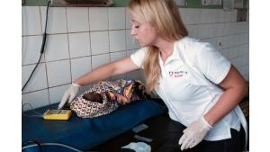 Lekarze dla Afryki – zbiórka na wyjazd neonatologa do Tanzanii Biuro prasowe
