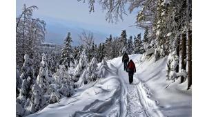 Zimowy lockdown powiększa długi branży turystycznej Biuro prasowe