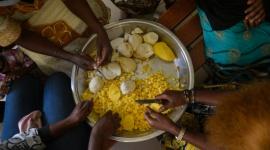 Światowy Dzień Żywności – przyszłość na planecie bez głodu Biuro prasowe