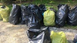 Trash Challenge – wrocławska firma podnosi rękawiczkę