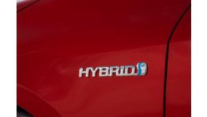 Hybrydowe hity pierwszej połowy 2019 roku w Polsce – 8 z 10 to Toyoty Biuro prasowe