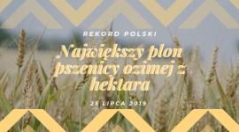 PROCAM Polska Sp. z o.o. idzie na Rekord Polski w plonie pszenicy ozimej