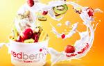 Pomysł na franczyzowy biznes z mrożonymi jogurtami i świeżo wyciskanymi sokami