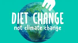 Greenwashing przed kluczowym wydarzeniem klimatycznym